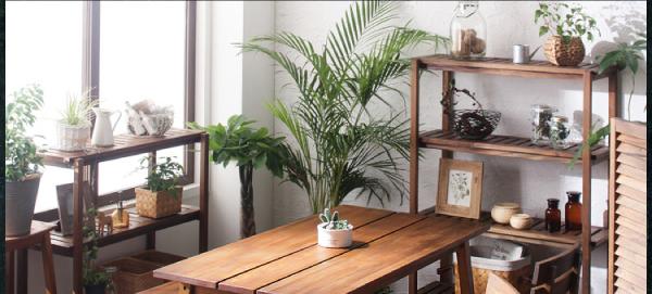 夏場のテーブルイメージ